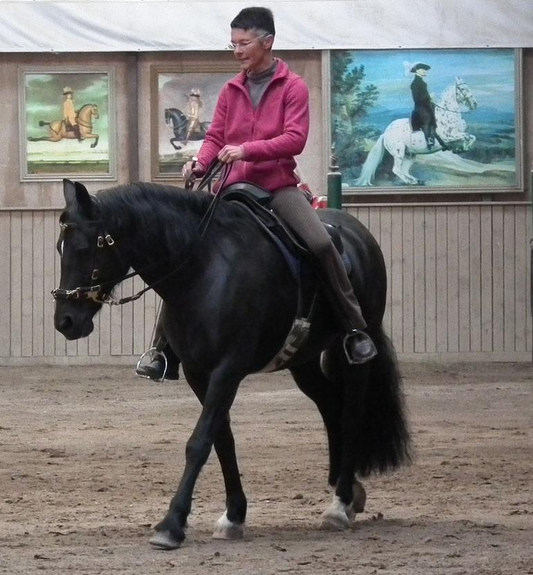 Alexandra Bohl - Seminare in der Pferde- und Reitschule am Talberg in Bischoffen
