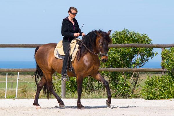 Dörte Bialluch in der Pferde- und Reitschule am Talberg bei Stephanie Kretz